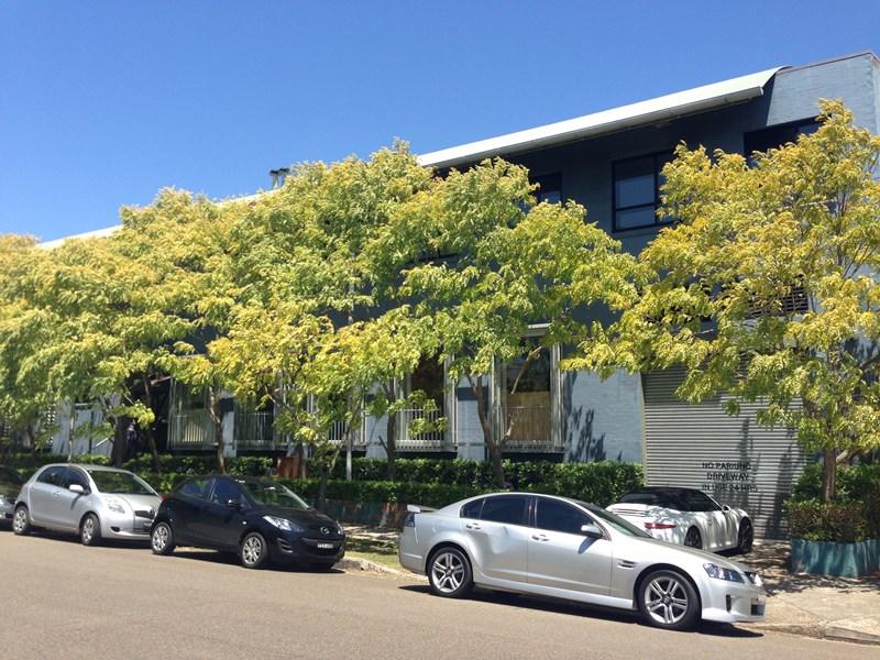 6/52 Queen Street BEACONSFIELD NSW 2015