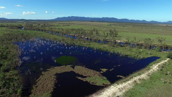 649 Canal Creek Road ROSSMOYA QLD 4702
