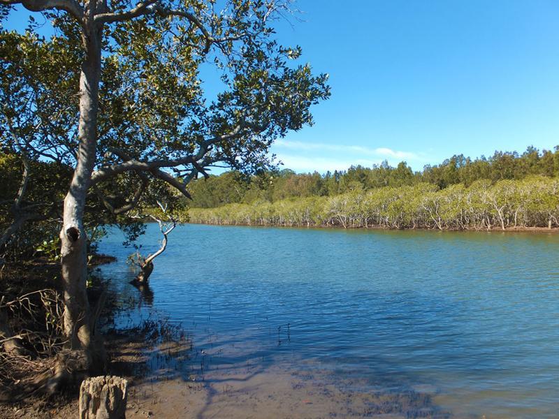 BOAMBEE NSW 2450