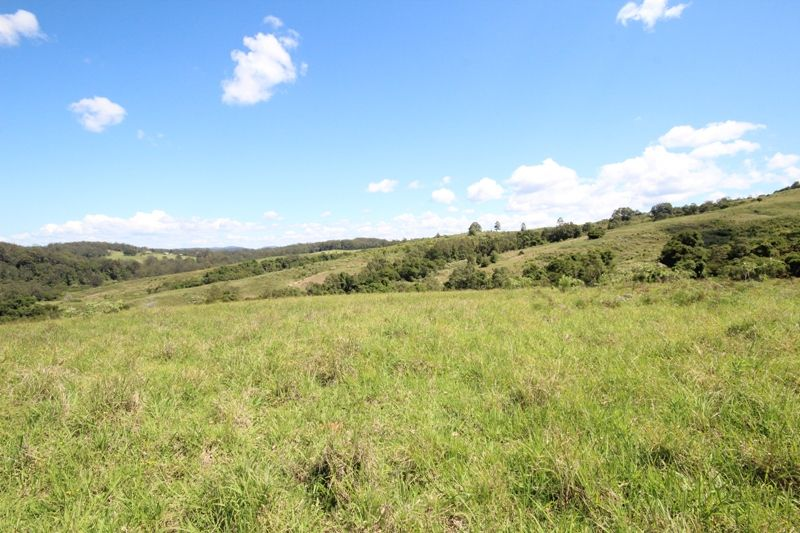 Lot 29 Tilbaroo Road ELANDS NSW 2429