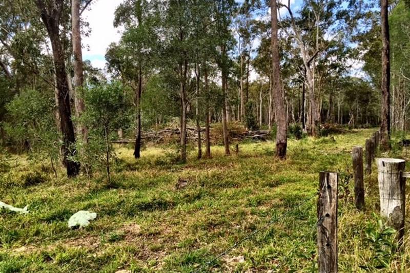 915 Swan Bay - New Italy Road NEW ITALY NSW 2472