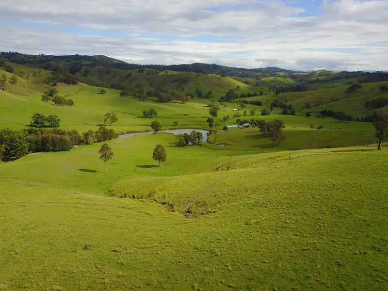 391 Hanleys Creek Road DUNGOG NSW 2420