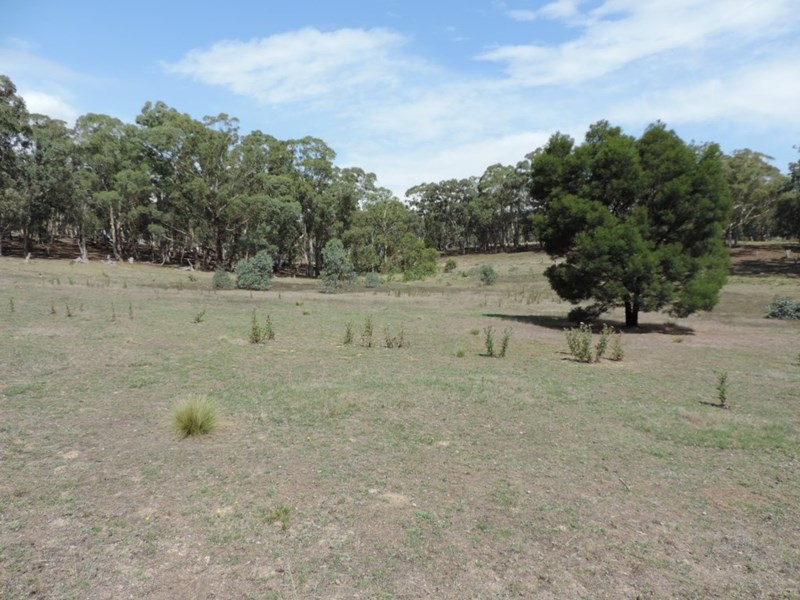 1411 Lumley Road BUNGONIA NSW 2580