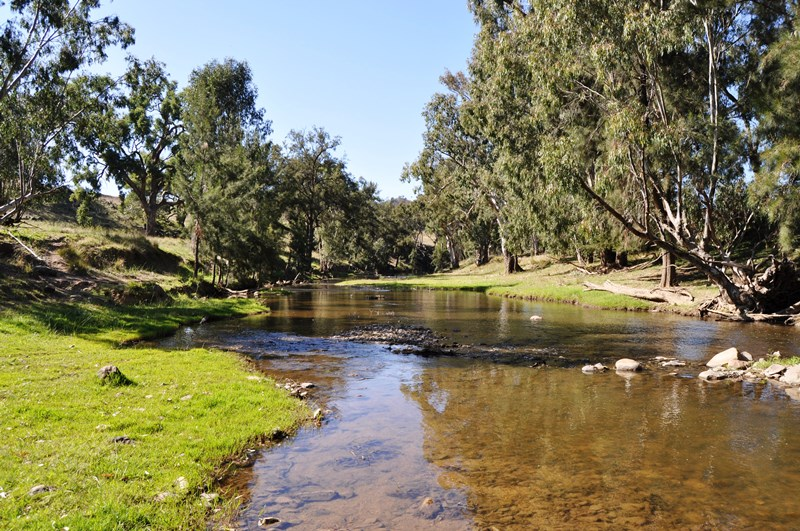 Rural Property For Sale Gulgong Nsw