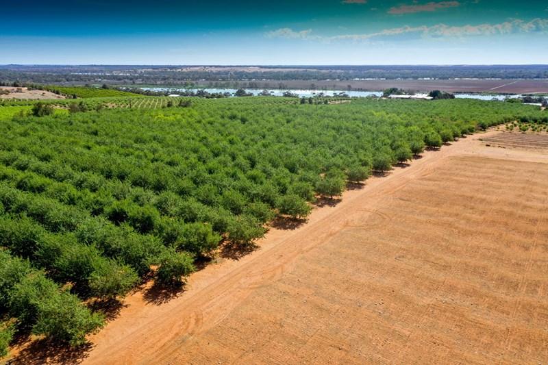 462 Rural & Farming Properties For Sale in SA