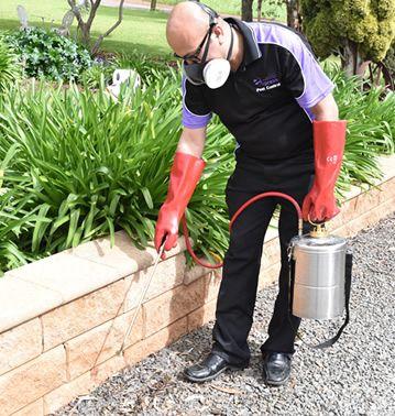 Express Business Group Australia wide  Pest Control franchise - Image 2
