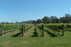 King River Estate EDI VIC 3678