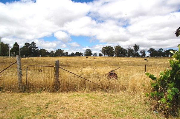 135 Bridge Street URALLA NSW 2358