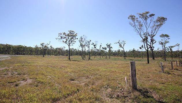 655 Bungundarra Road BUNGUNDARRA QLD 4703