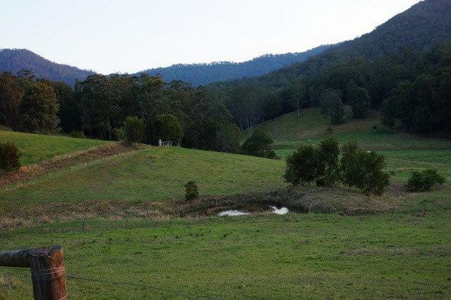 439 Upper Buckra Bendinni BOWRAVILLE NSW 2449
