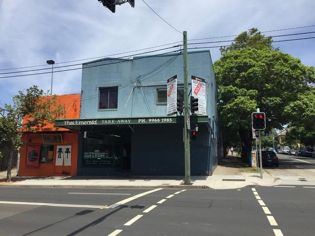 107 West Street CROWS NEST NSW 2065