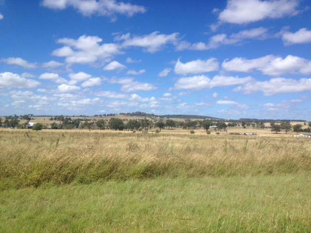 0 Sterling SOUTHBROOK QLD 4363