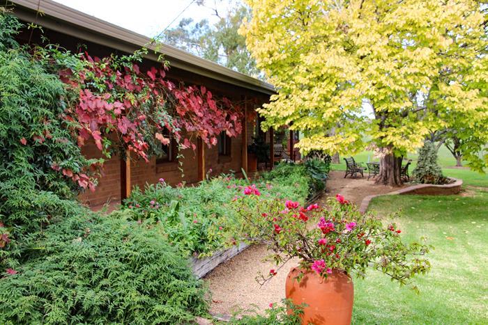 """""""Forest Glen"""" COONABARABRAN NSW 2357"""