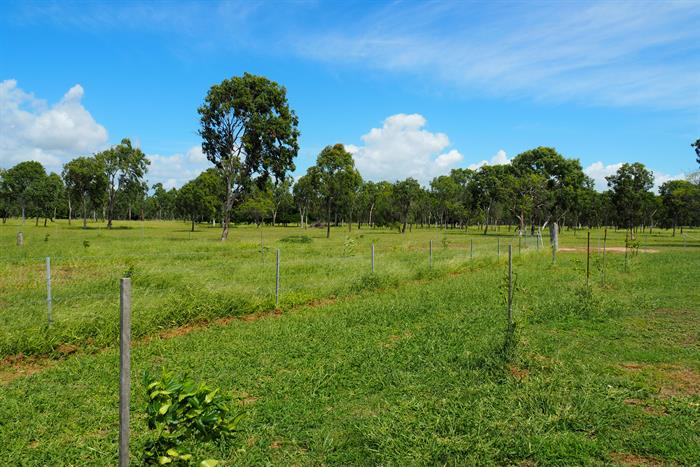Address available on request HOME HILL QLD 4806