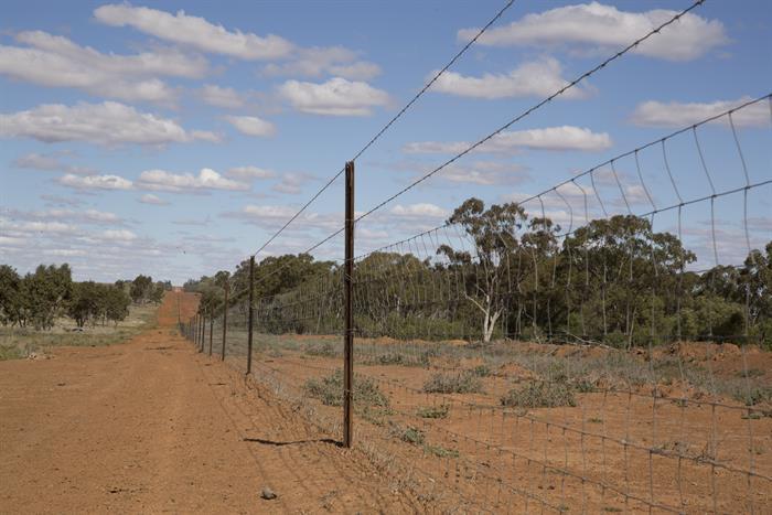 0 Mungallala ROMA QLD 4455
