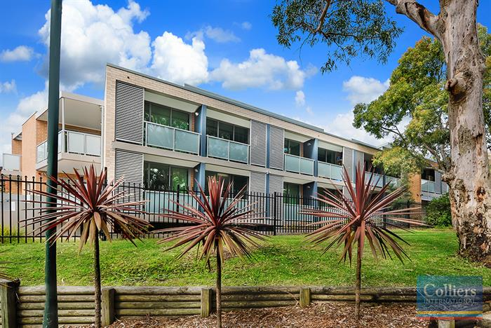 174 & 176 Old Pittwater Road BROOKVALE NSW 2100