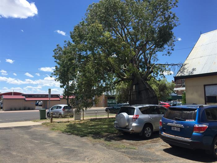 63 Arthur Street ROMA QLD 4455