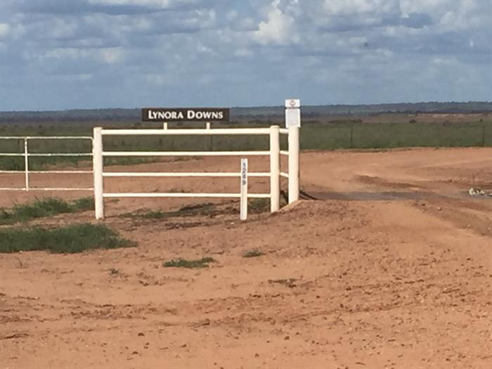 Lynora Downs ROLLESTON QLD 4702