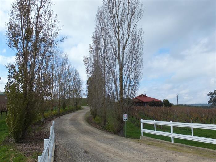 Schuberts Road LOBETHAL SA 5241