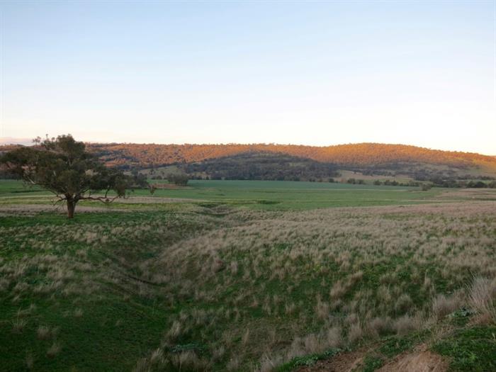 2624 Ridgelands Road BUNNAN NSW 2337
