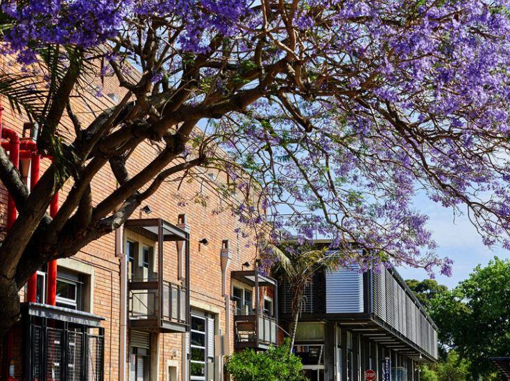 A2/160 Bourke Road ALEXANDRIA NSW 2015