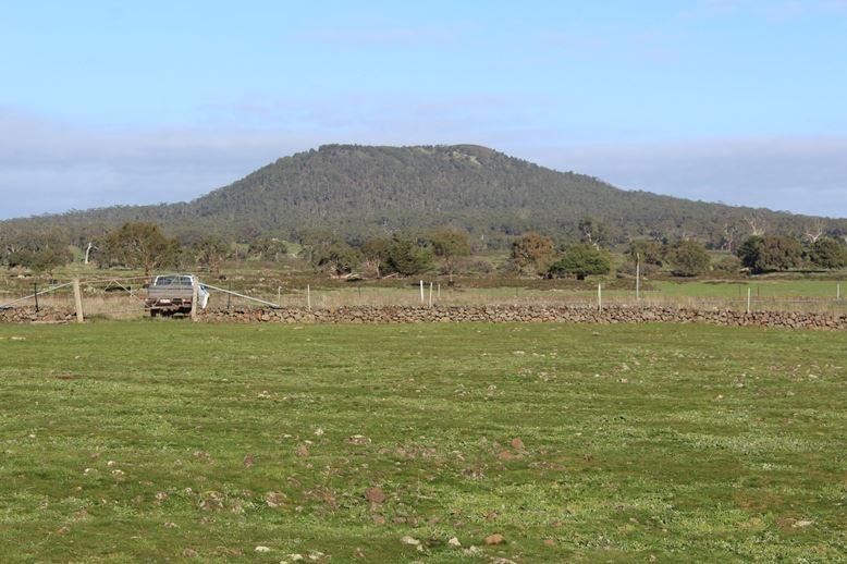 1551 Mt. Napier Road BUCKLEY SWAMP VIC 3301