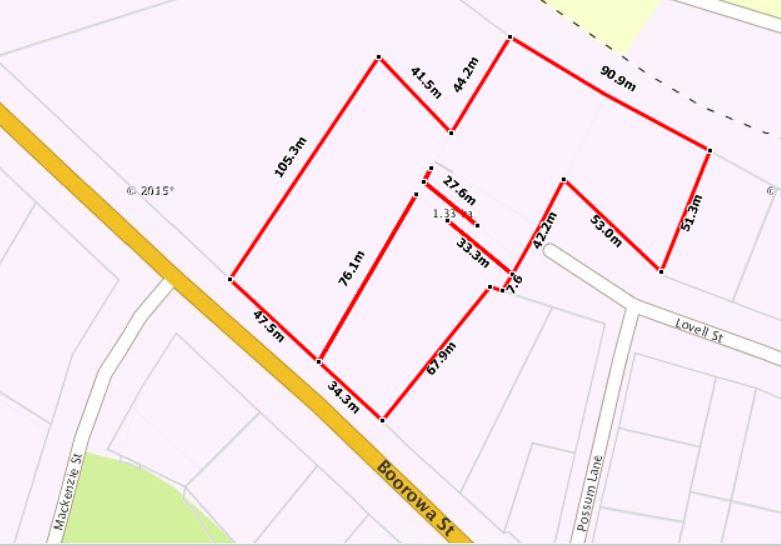317 Boorowa Street YOUNG NSW 2594