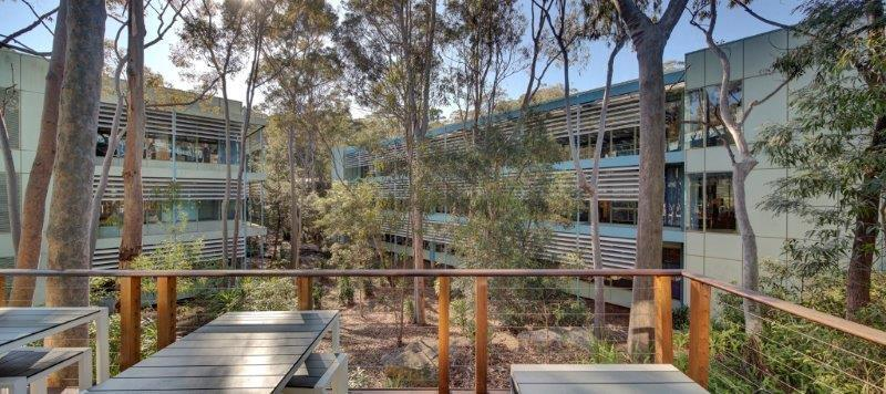 55 Coonara Avenue WEST PENNANT HILLS NSW 2125