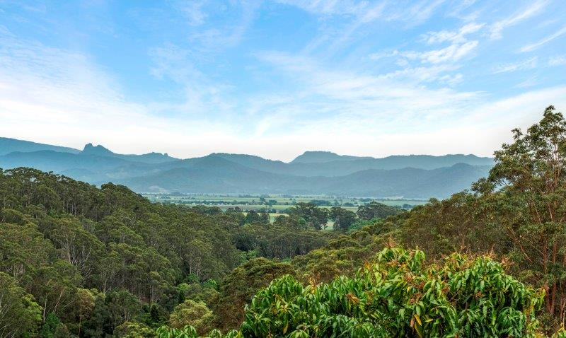 Lot 1 Clothiers Creek Road NUNDERI NSW 2484