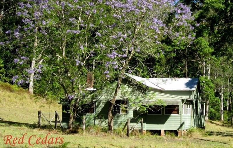 3716 Allyn River Road EAST GRESFORD NSW 2311