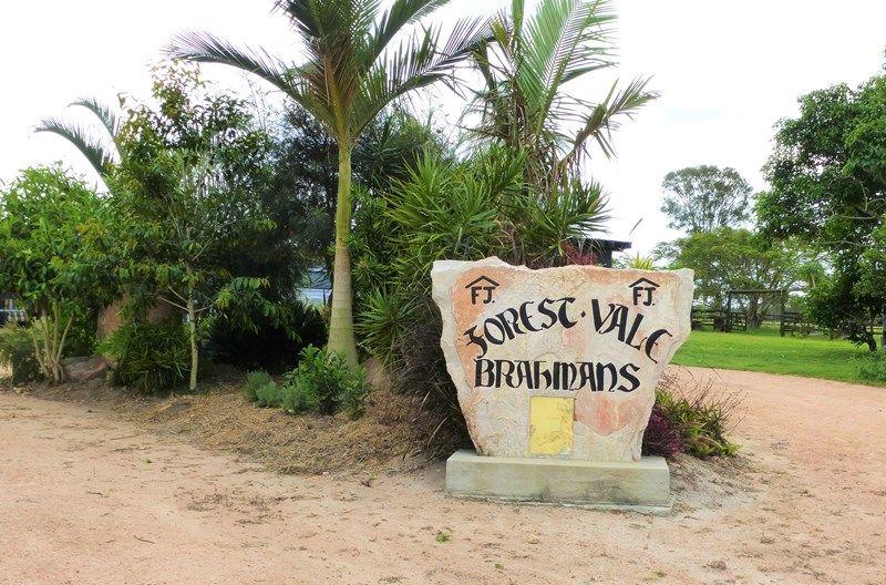 1272 Fingerboard Road MOUNT TOM QLD 4677