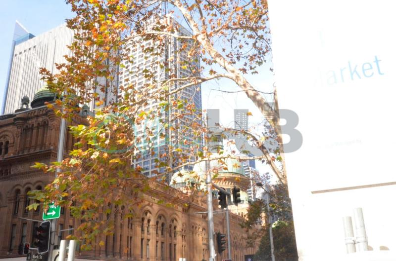 37/44 Market Street SYDNEY NSW 2000
