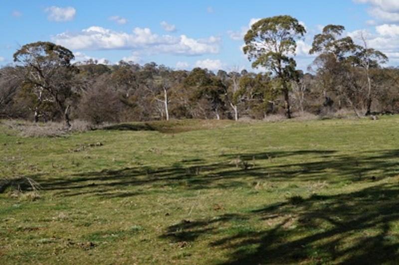 197 Benlomond Road BEN LOMOND NSW 2365