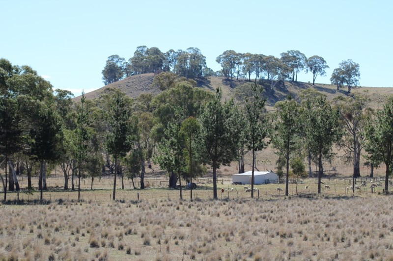 734 Glen Legh Road GLEN INNES NSW 2370