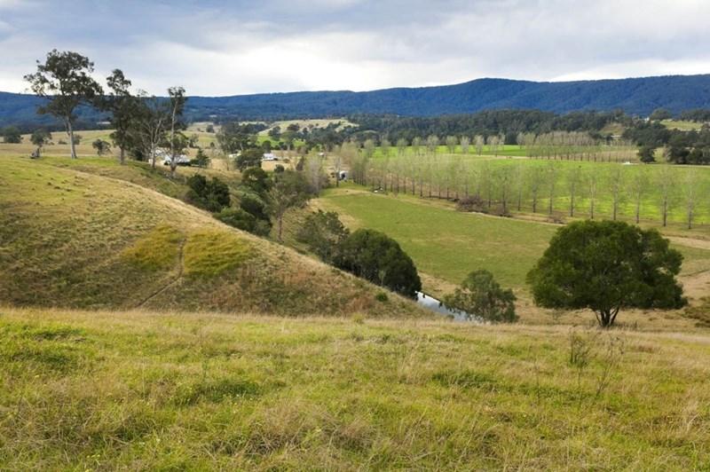 1295 Chichester Dam Road DUNGOG NSW 2420