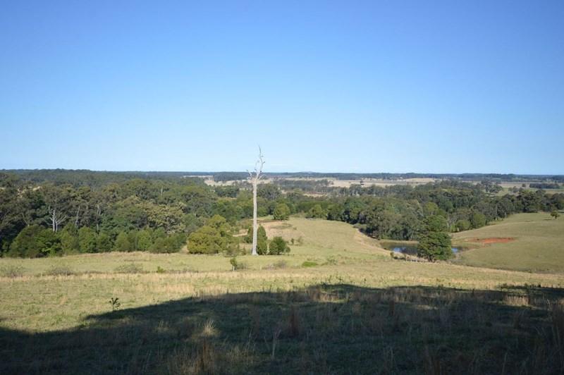 67 Riddles Brush Road MOORLAND NSW 2443