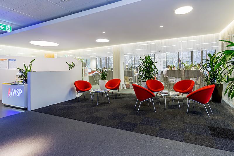 Suite 203/41 McLaren NORTH SYDNEY NSW 2060