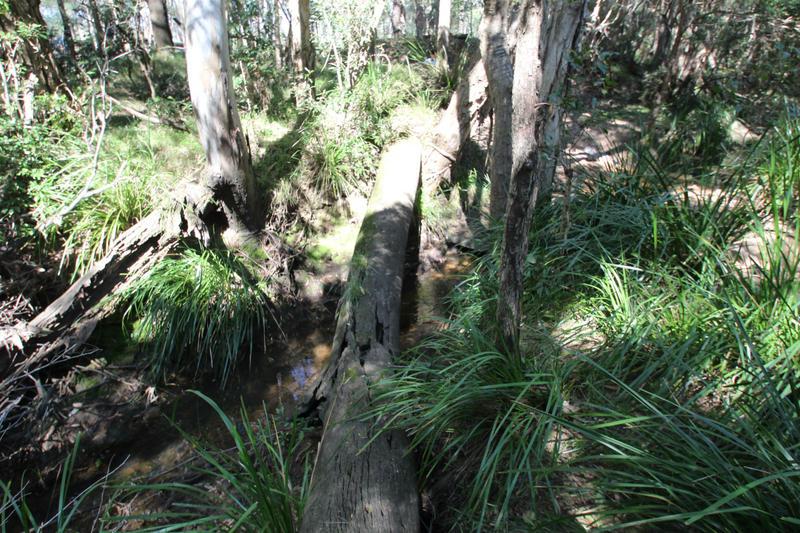 112 Stevens Road BUCCA QLD 4670