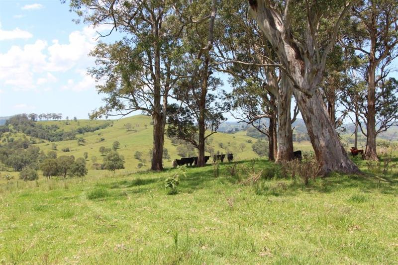 Lot A Kia Ora Rd GLOUCESTER NSW 2422