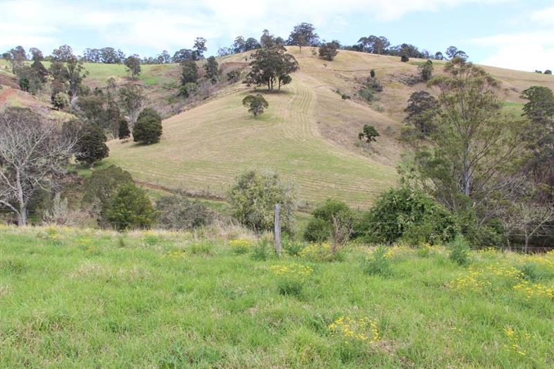 673 Titaatee Creek Rd GLOUCESTER NSW 2422