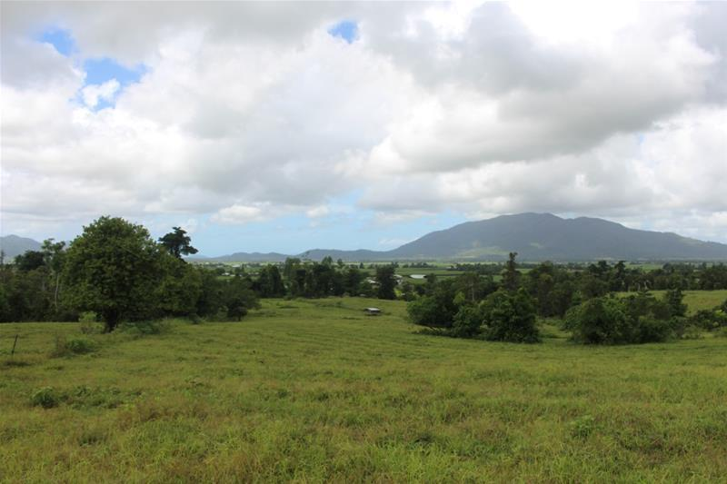 Lot 102 Old Tully Road FELUGA QLD 4854