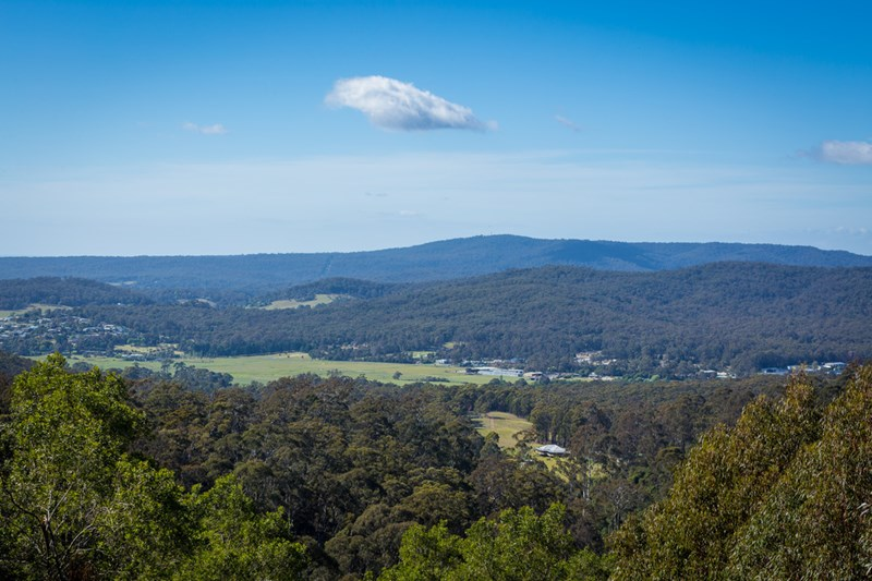 Lot A Omaru Lane BALD HILLS NSW 2549