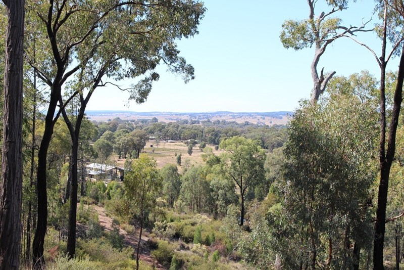 Lot 109 Staircase Road PARKES NSW 2870