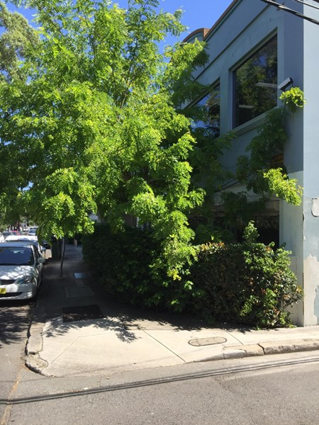 Grd Fl & L/44-70 ROSEHILL STREET REDFERN NSW 2016