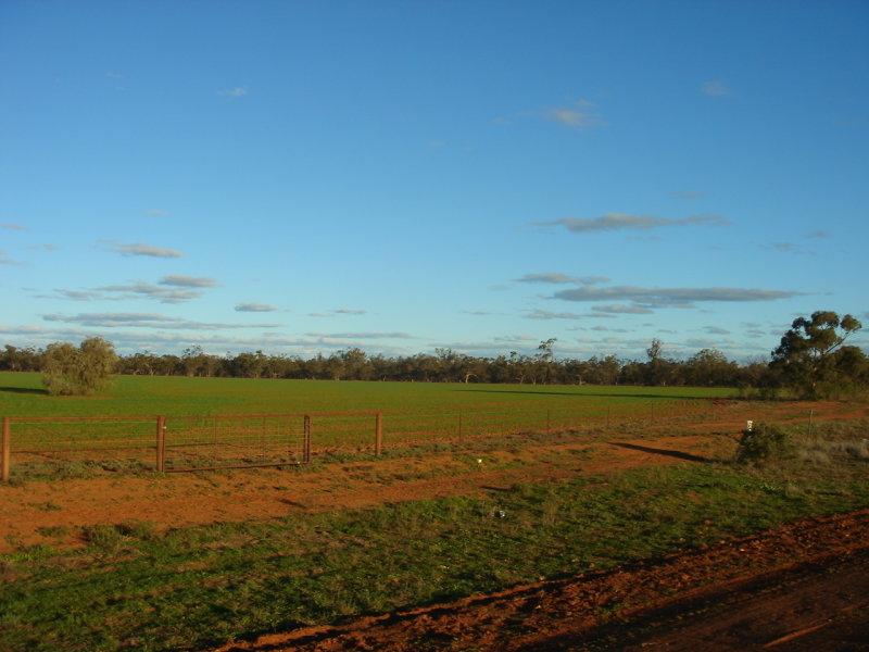 Lot 1 Lachlan River Road HILLSTON NSW 2675