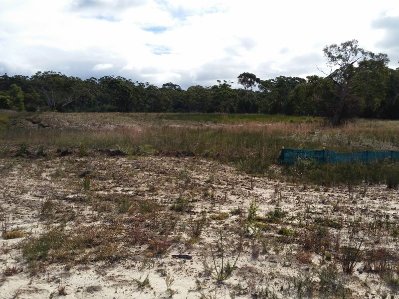65 Pile Road SOMERSBY NSW 2250