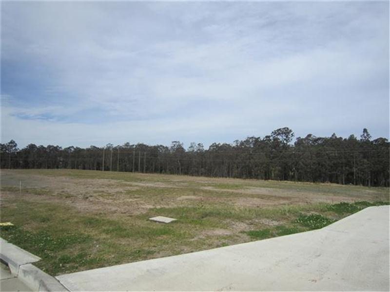 (Lot 205)/ Elwell Close BERESFIELD NSW 2322