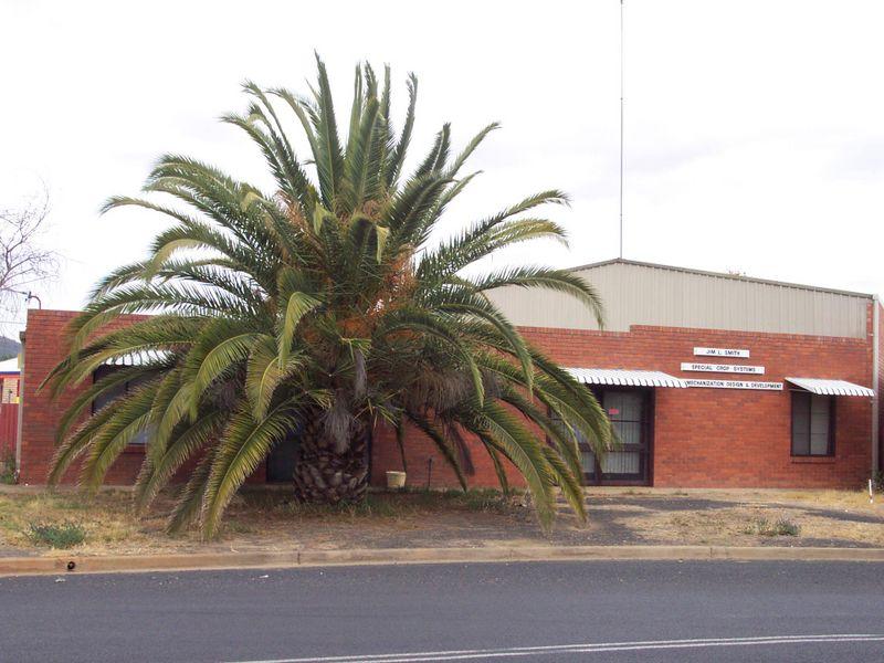 1 Warrawee Place WELLINGTON NSW 2820