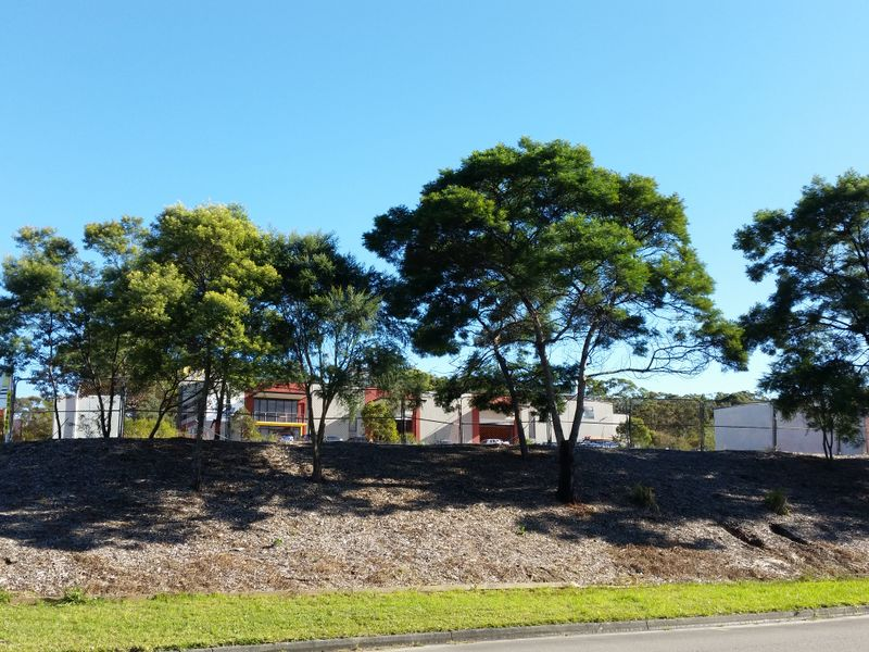 64 Somersby Falls Road SOMERSBY NSW 2250