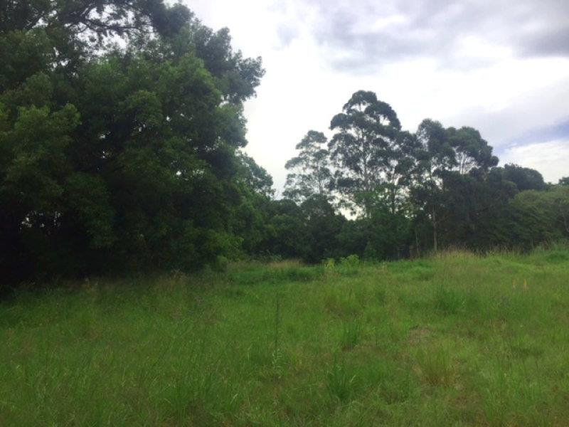 6 Rees James Road RAYMOND TERRACE NSW 2324